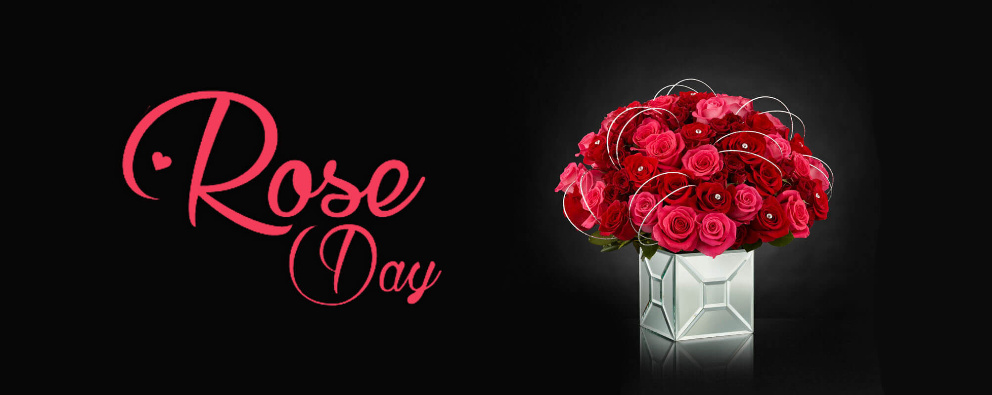 happy rose day red love girl friend valentine wishes greetings image hd wallpaper
