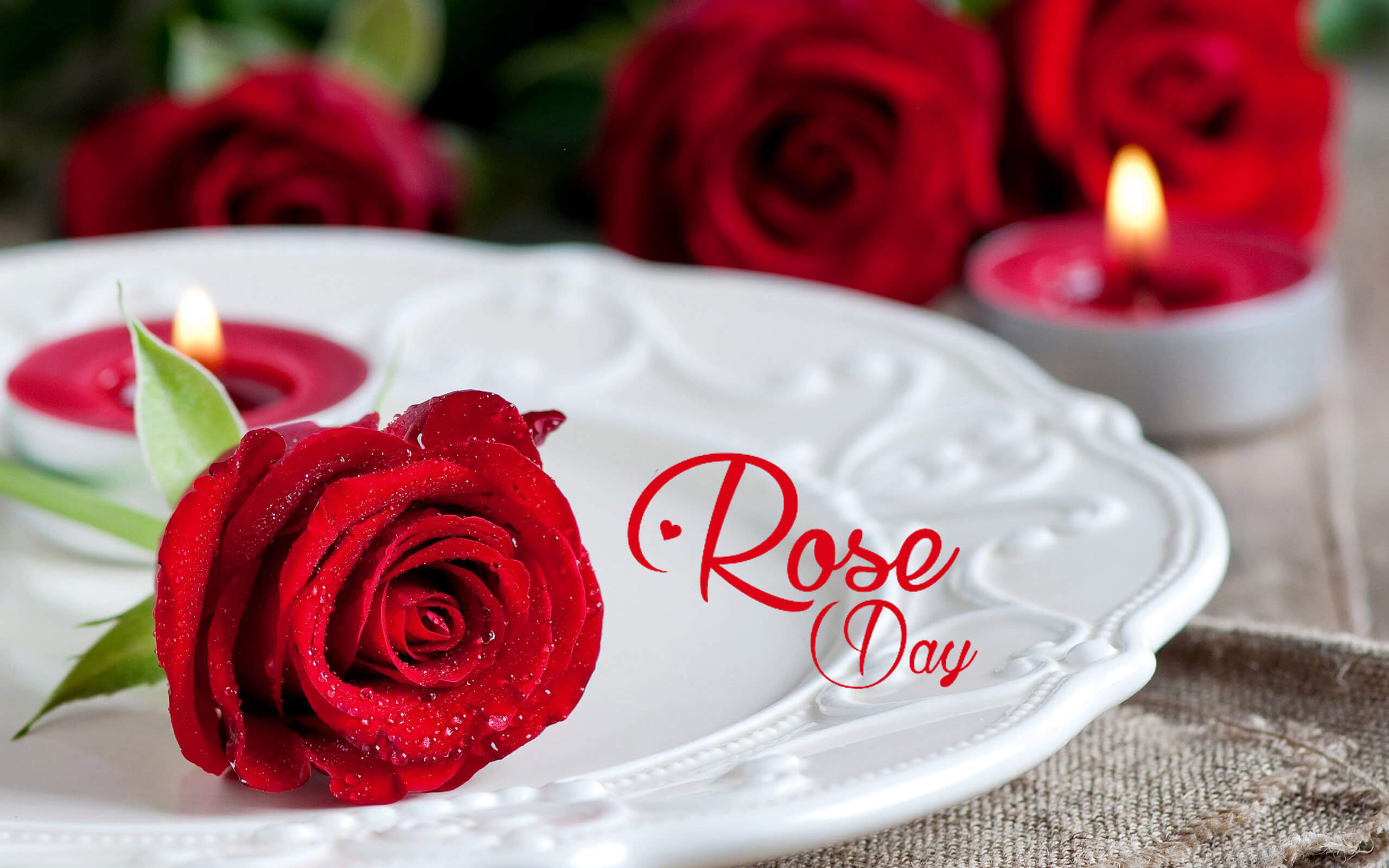 happy rose day red love wishes greetings image picture background hd wallpaper