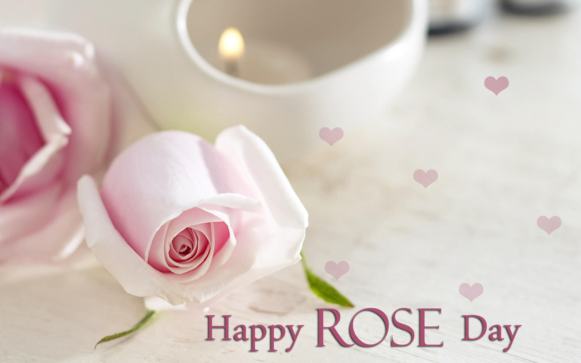 happy rose day white wishes greetings girl friend image hd wallpaper