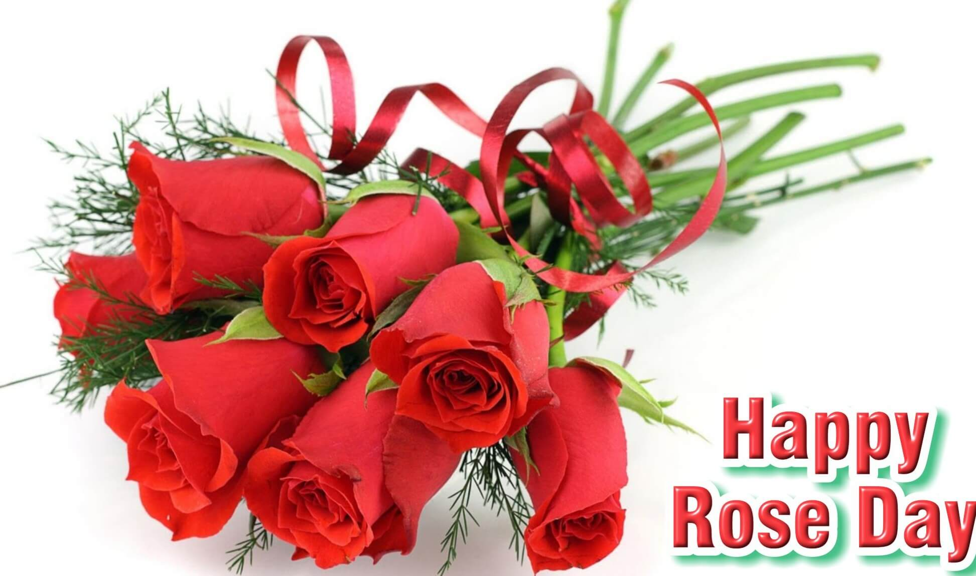 happy rose day wishes image picture background desktop hd wallpaper