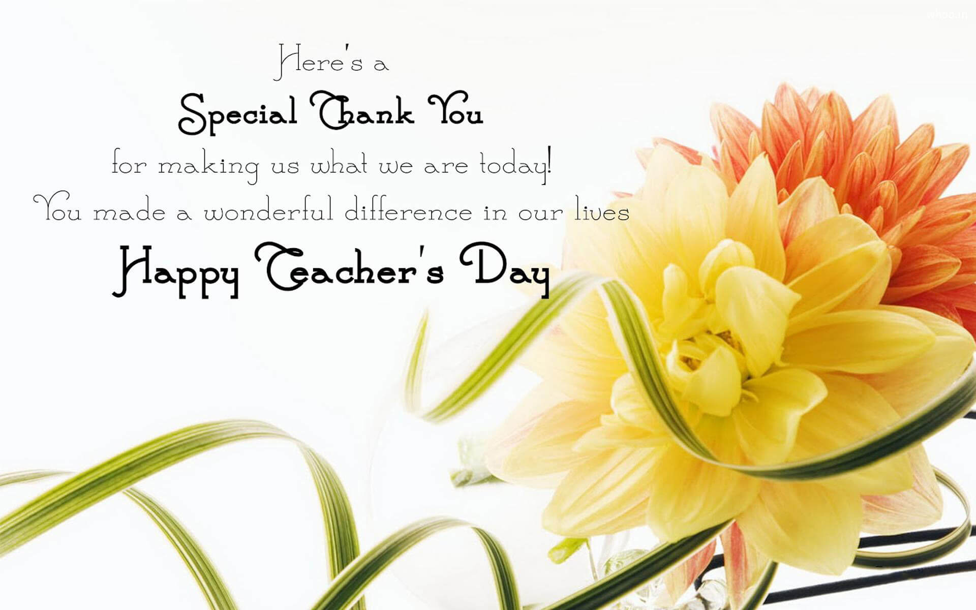 happy teachers day quotes wishes flowers hd wallpaper