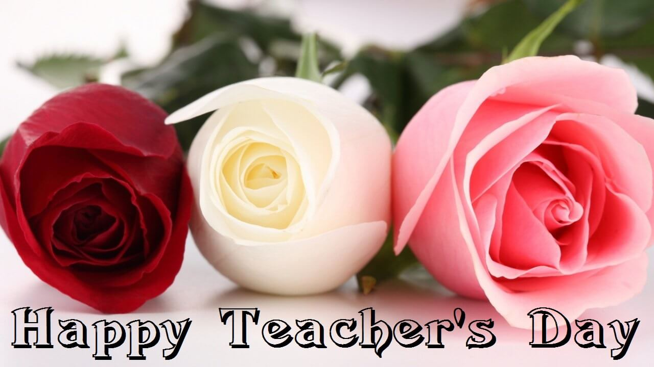 Happy teachers day wishes roses flowers hd wallpaper altavistaventures Choice Image