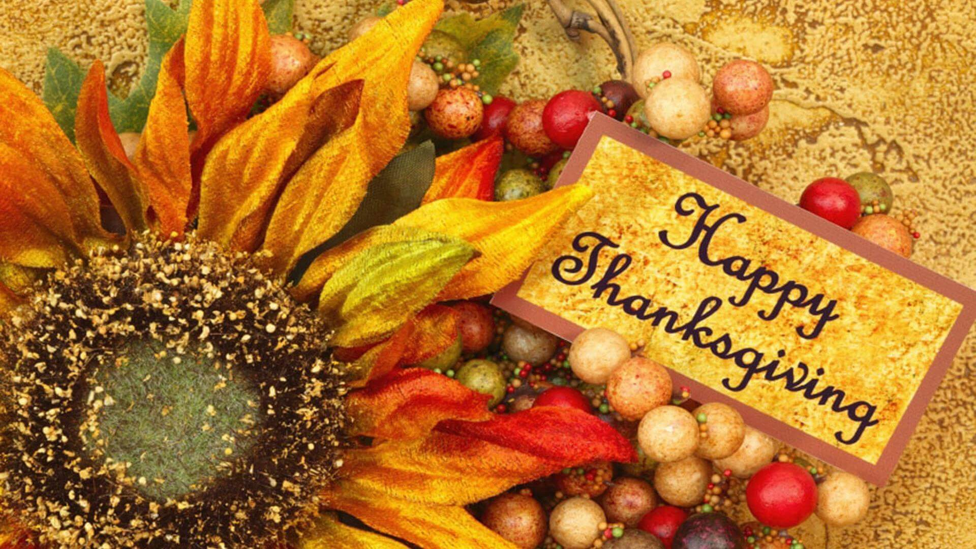 happy thanksgiving day flower desktop wallpaper