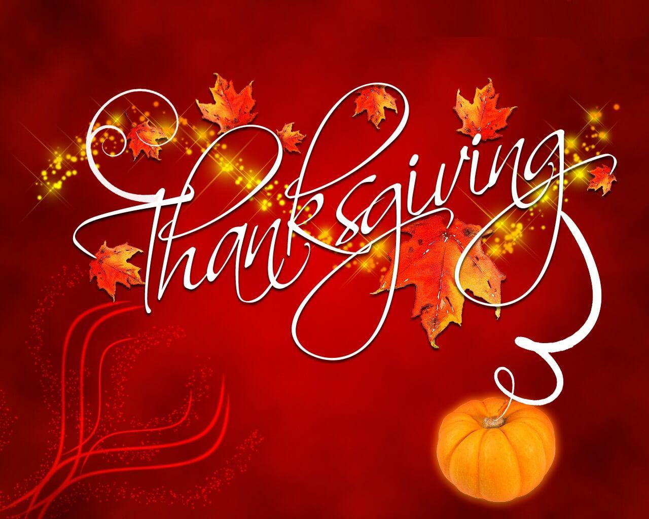 happy thanksgiving day modern pumpkin best hd wallpaper
