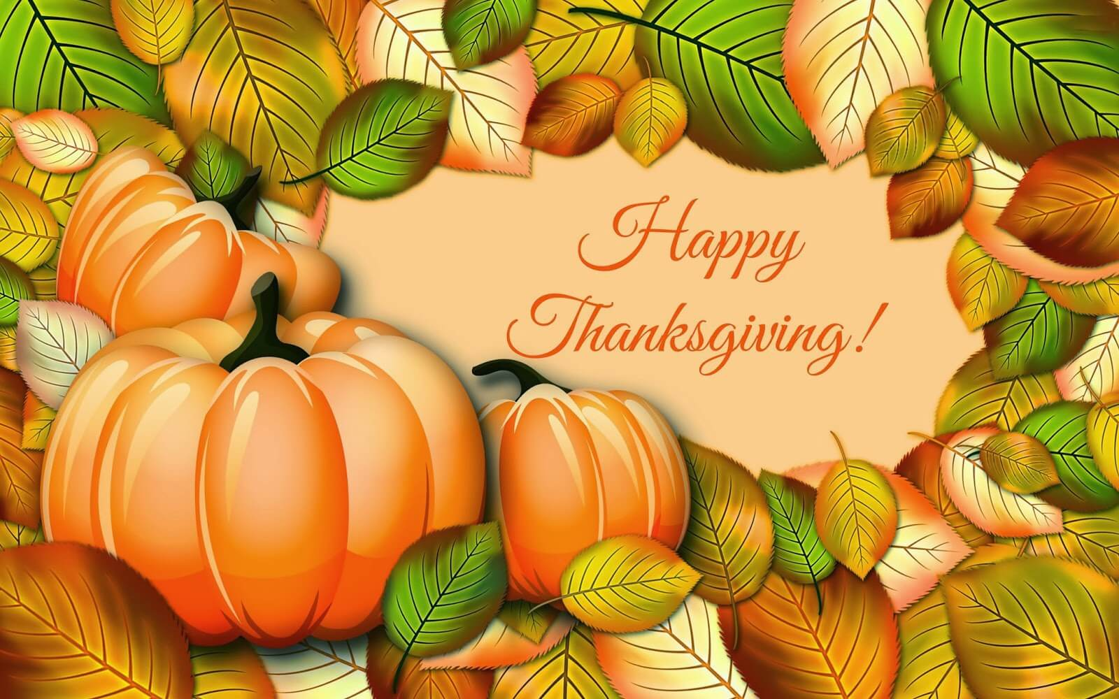 happy thanksgiving day pumpkin cute best hd wallpaper