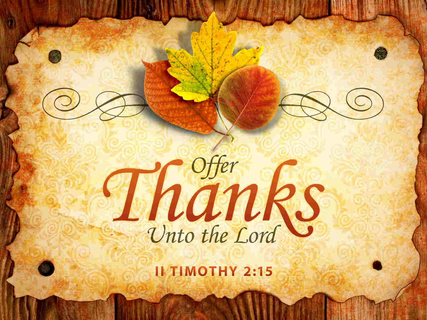happy thanksgiving day to the lord verse hd wallpaper