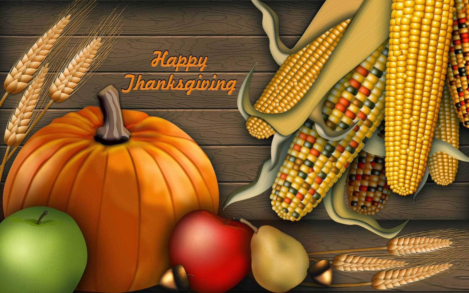 happy thanksgiving day wishes pumpkin corns latest hd wallpaper