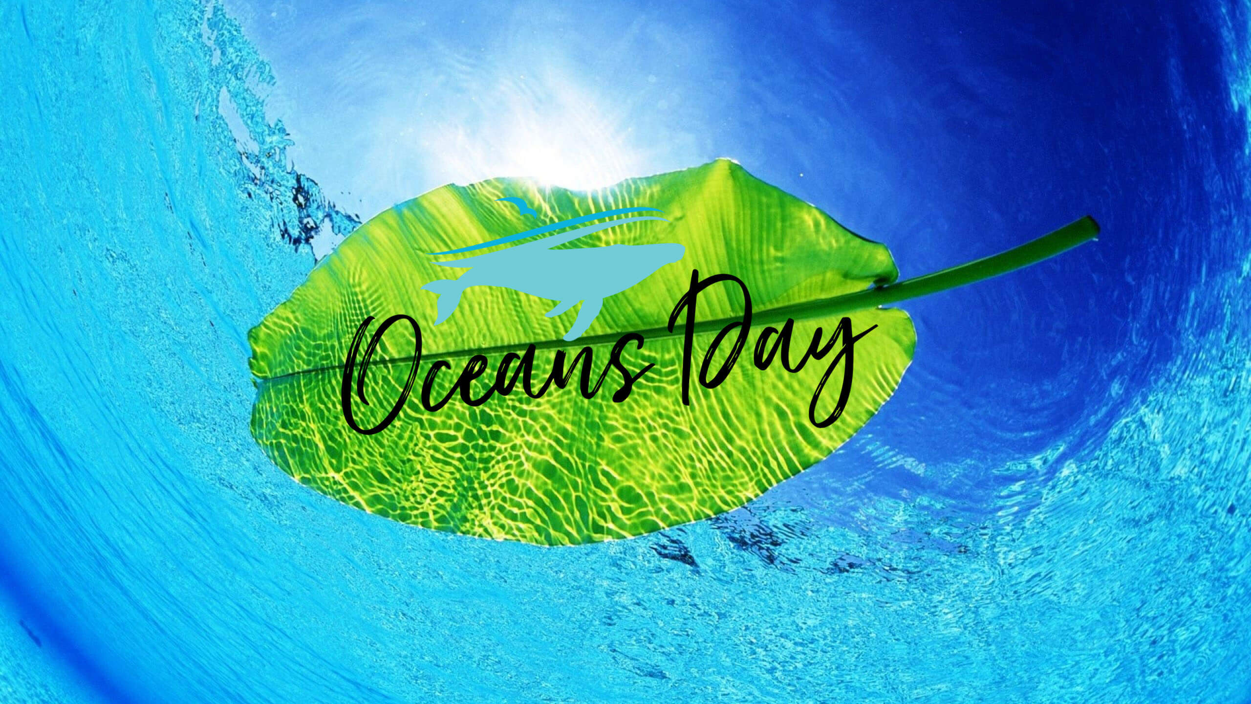 happy world oceans day leaf hd wallpaper