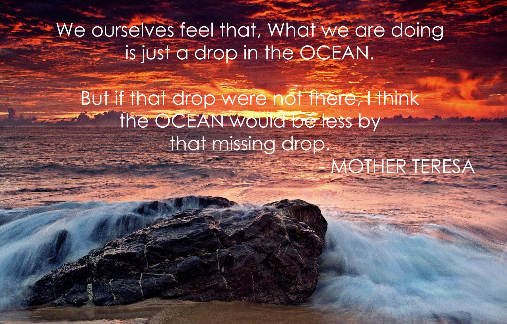 happy world oceans day mother teresa quotes hd wallpaper