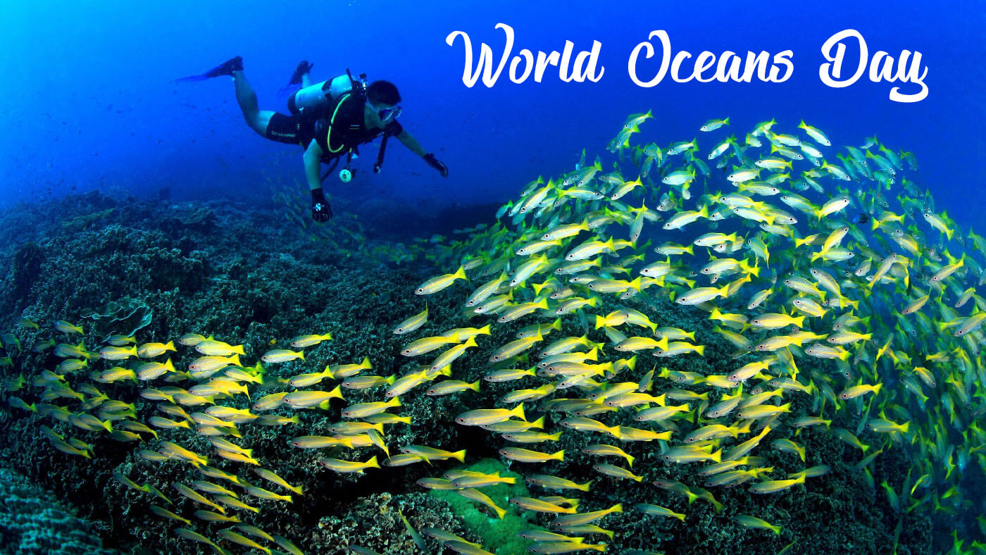 happy world oceans day scuba diving underwater hd wallpaper