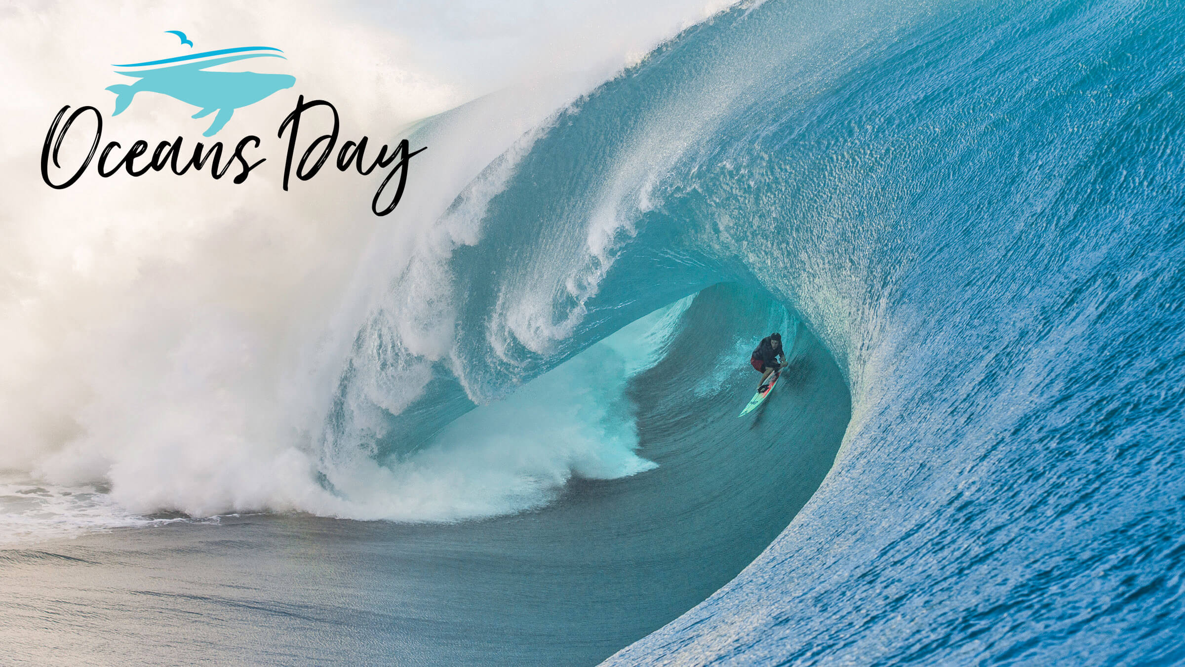 happy world oceans day surfing hd wallpaper