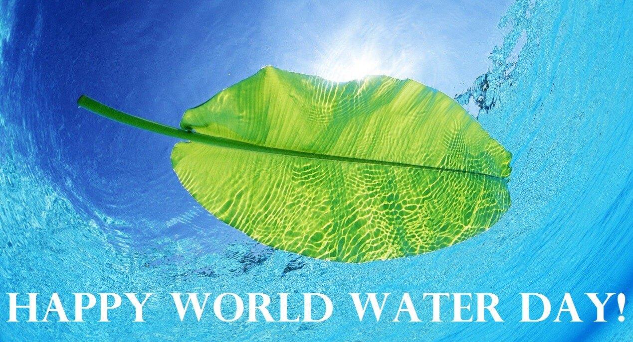 happy world water day desktop hd