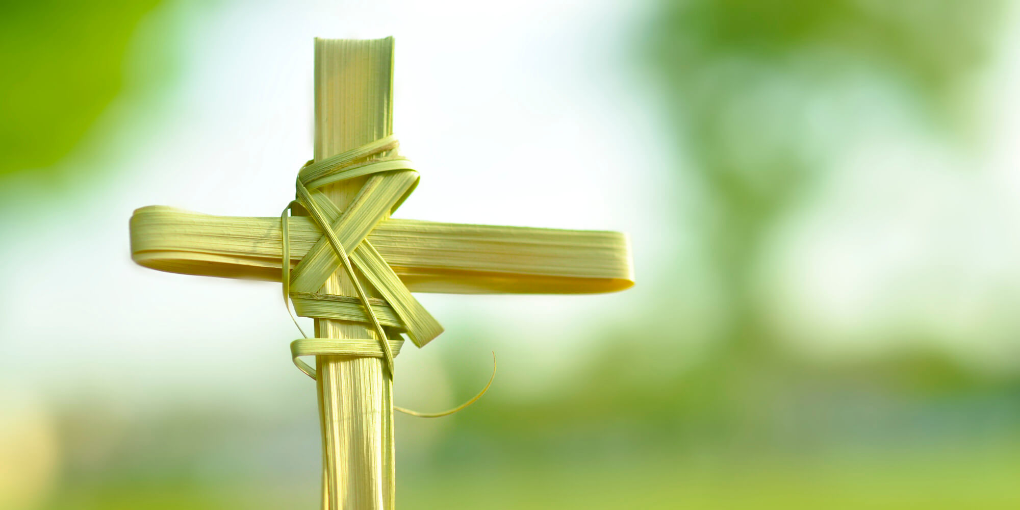 palm sunday hosanna king jesus cross hd wallpaper