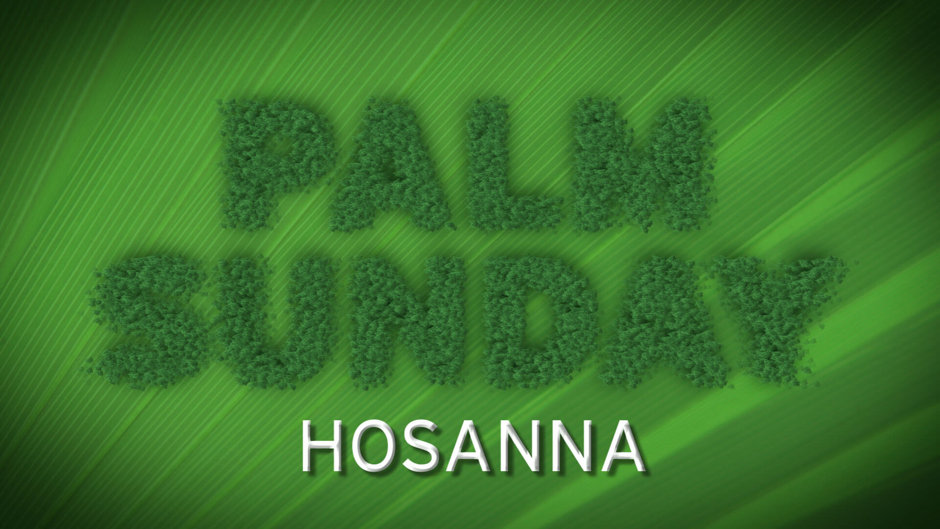 palm sunday hosanna king jesus free hd wallpaper