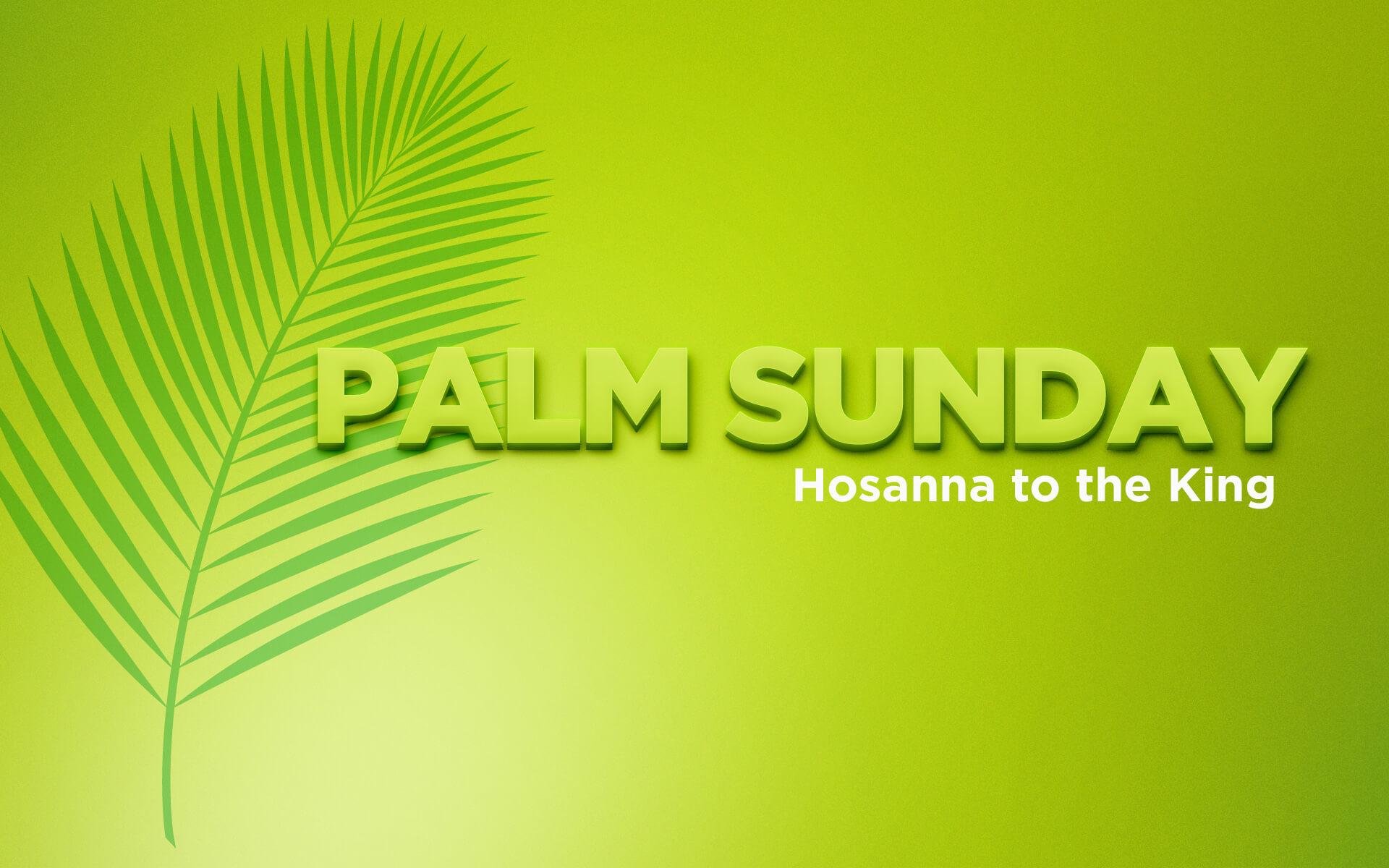 Palm Sunday Hosanna King Jesus Hd Wallpaper