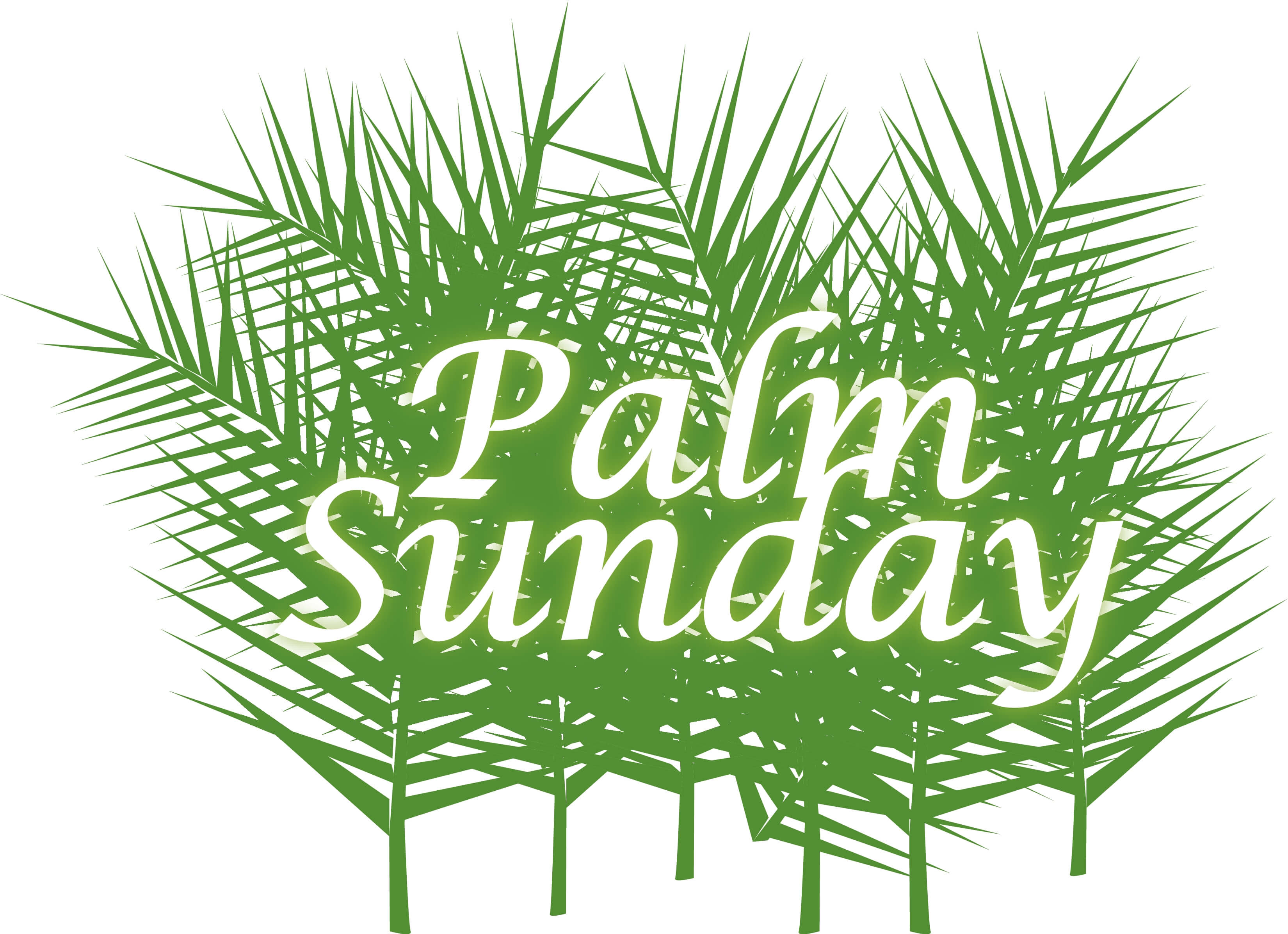 palm sunday with green fronds wallpaper