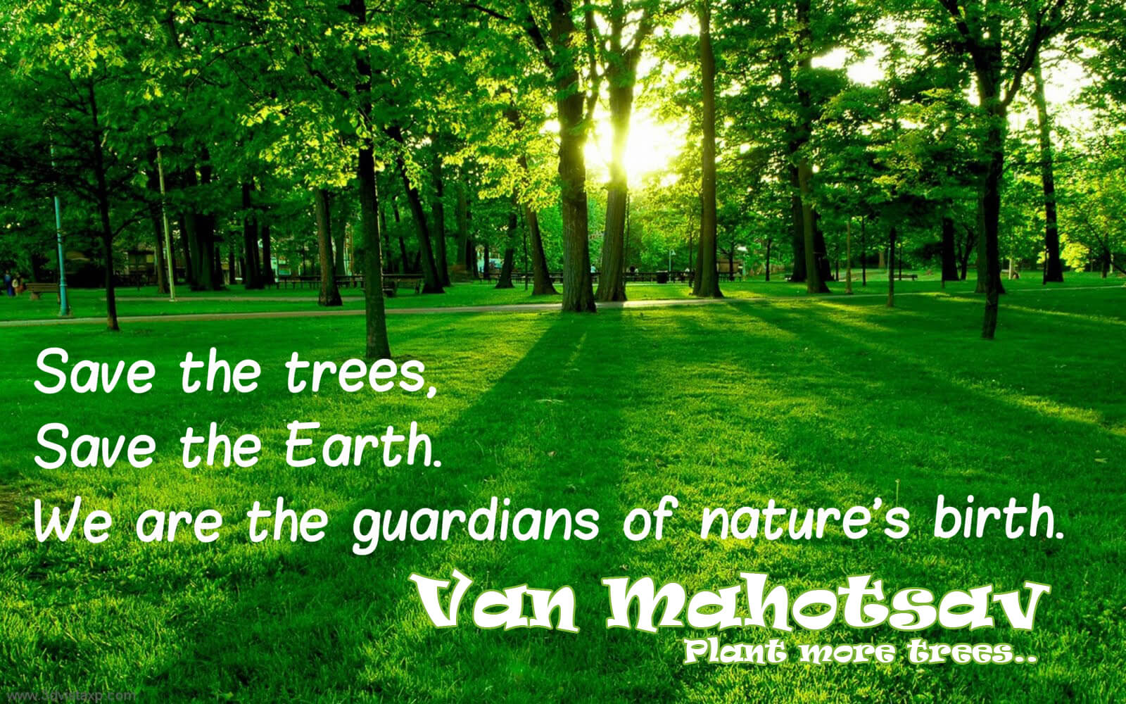 van mahotsav day tree planting save earth nature image