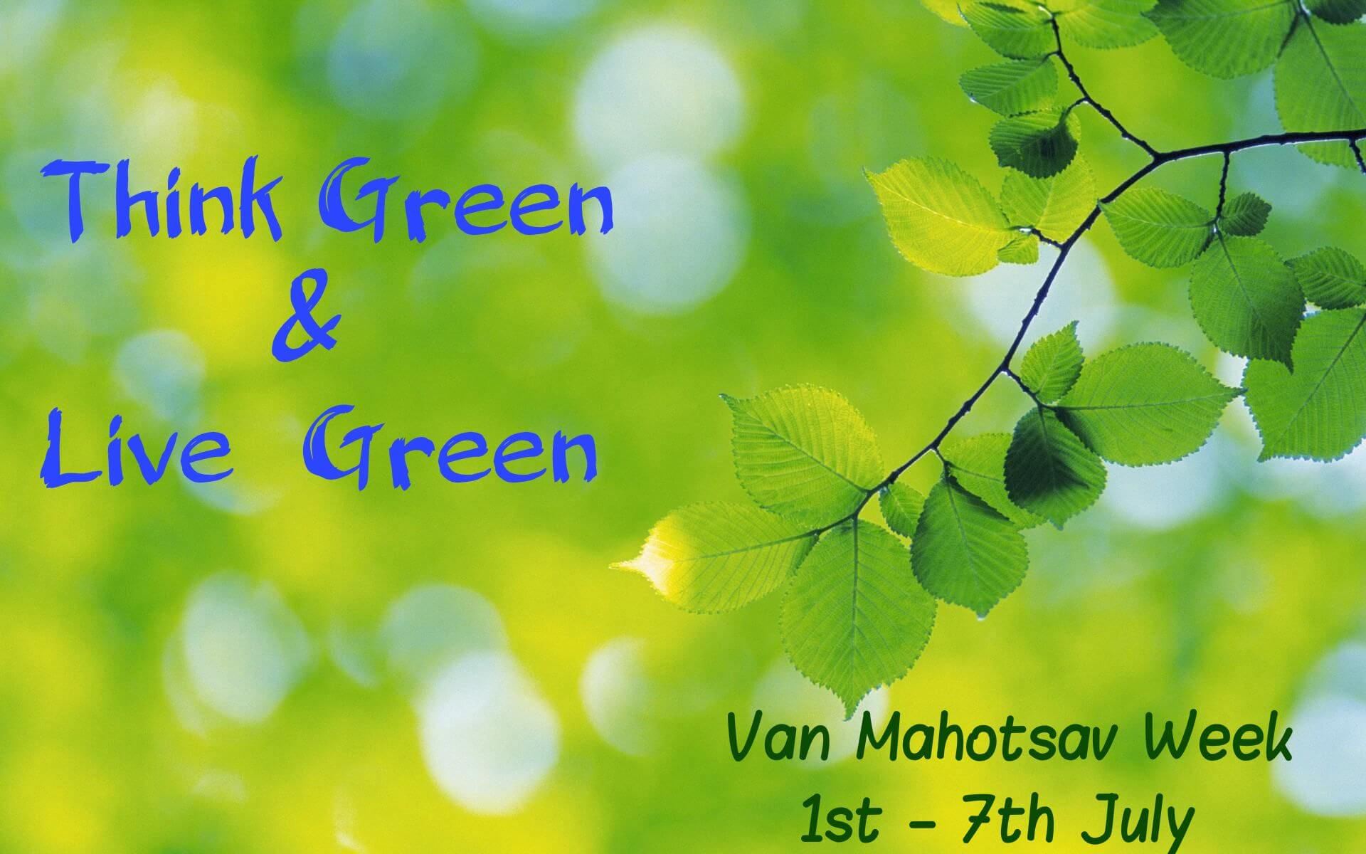 van mahotsav day tree planting think live green wallpaper