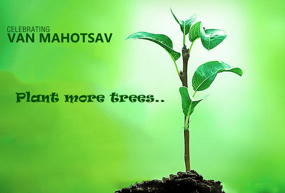 van mahotsav day tree saplings planting save earth nature image