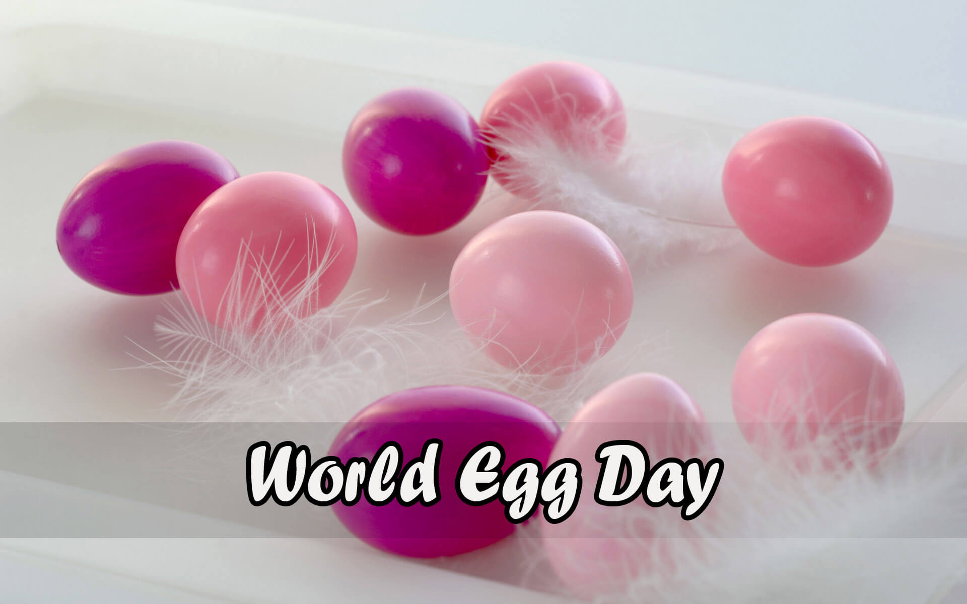 world egg day light dark pink eggs hd wallpaper