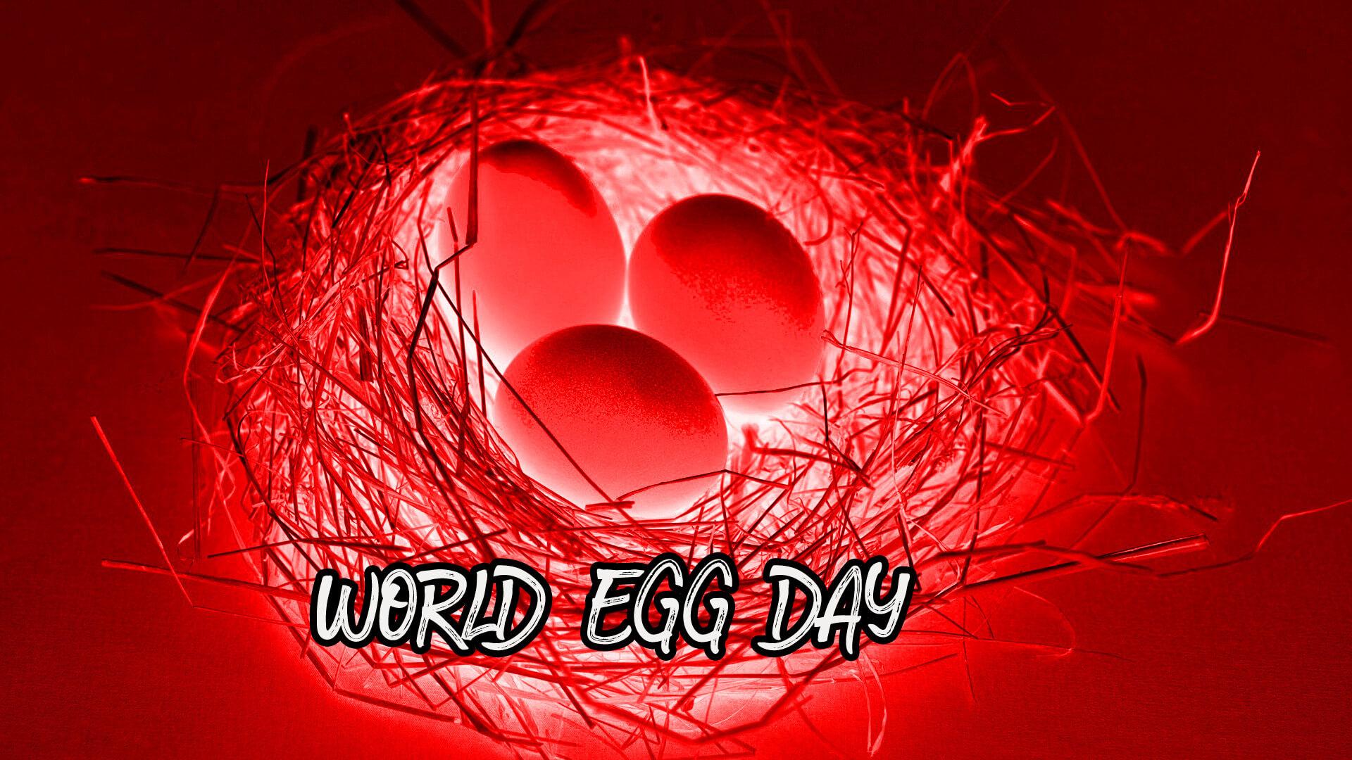 world egg day red burning eggs pc desktop hd wallpaper