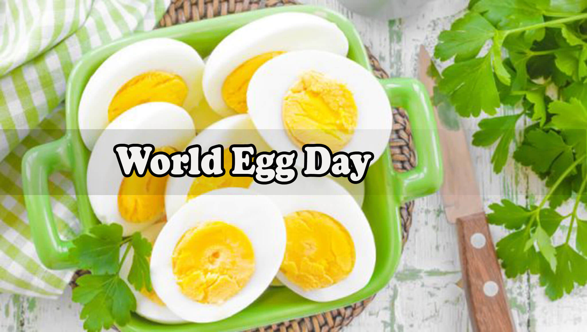 world egg day white half boiled desktop hd wallpaper