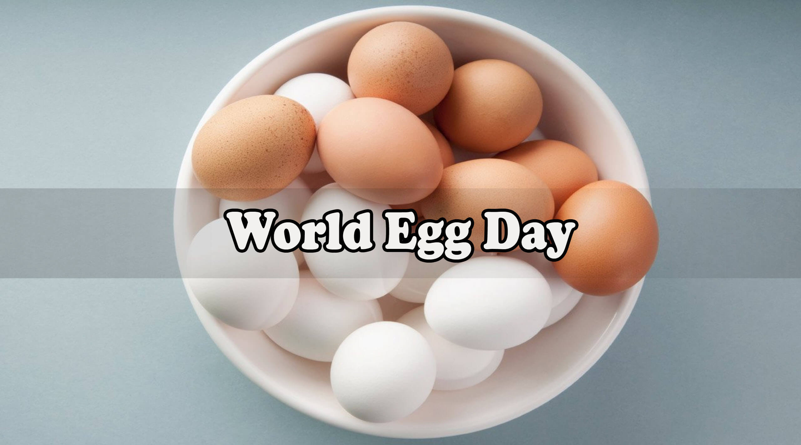 world egg day wishes white brown eggs cup image wallpaper