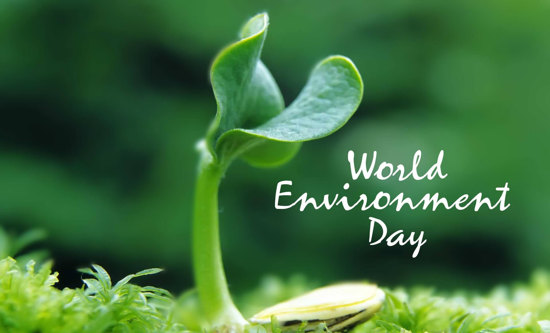 world environment day wallpaper