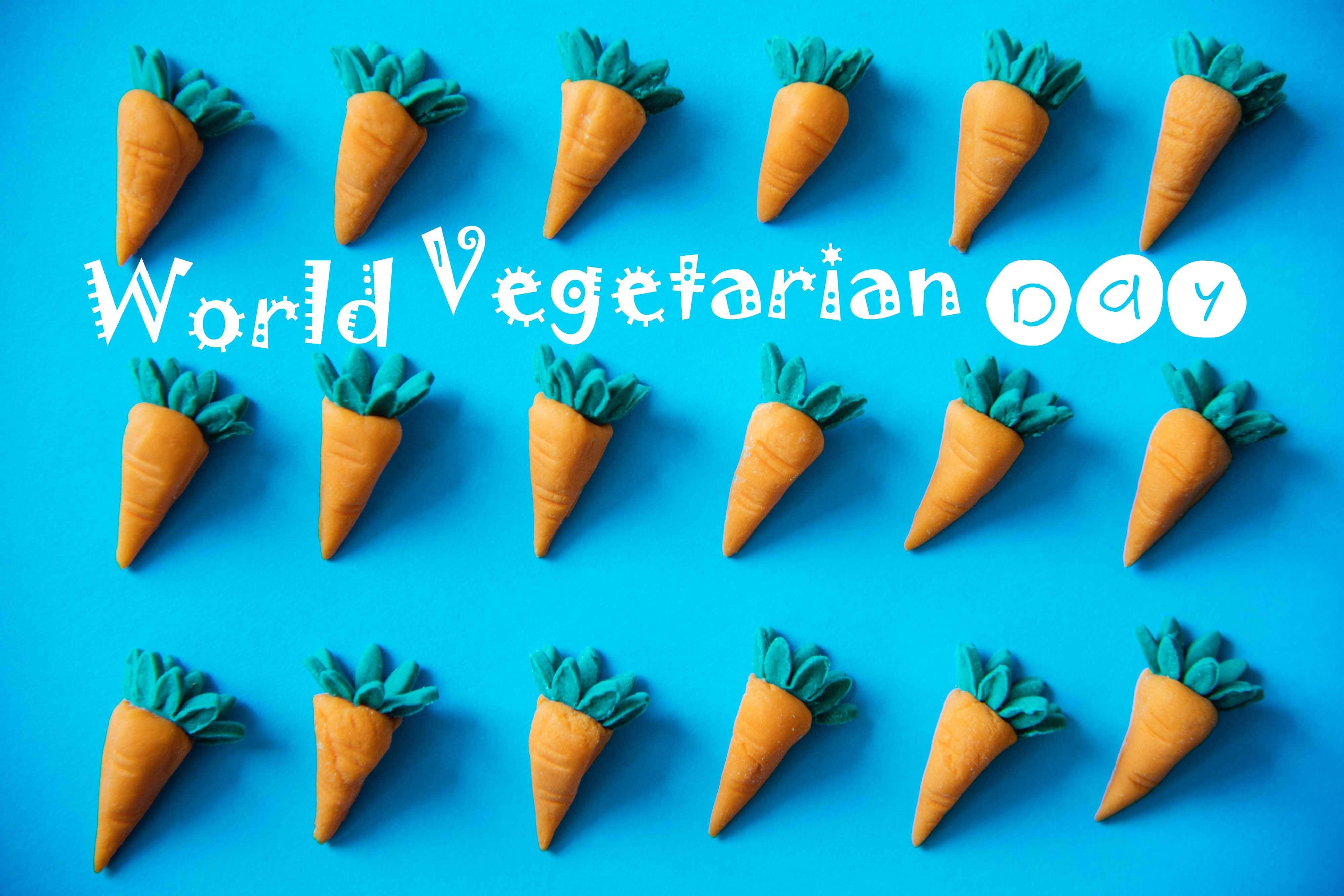 world vegetarian day carrot vegan image pc image wallpaper