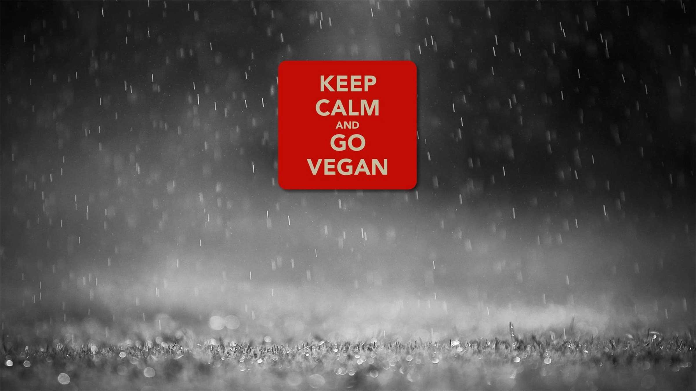 world vegetarian day text quotes go vegan image pc hd wallpaper