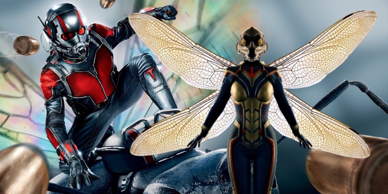 ant man and wasp marvel super hero hd wallpaper