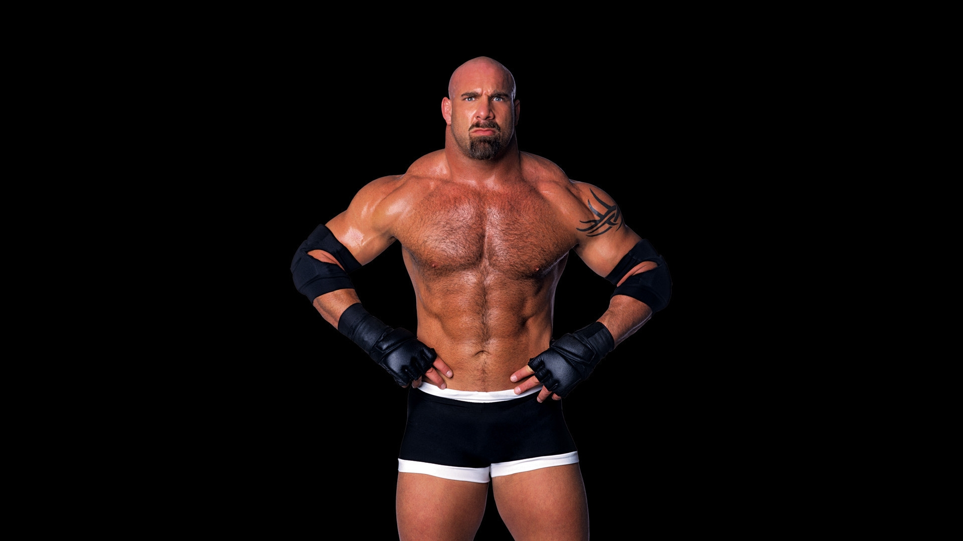 goldberg wwe free hd wallpaper