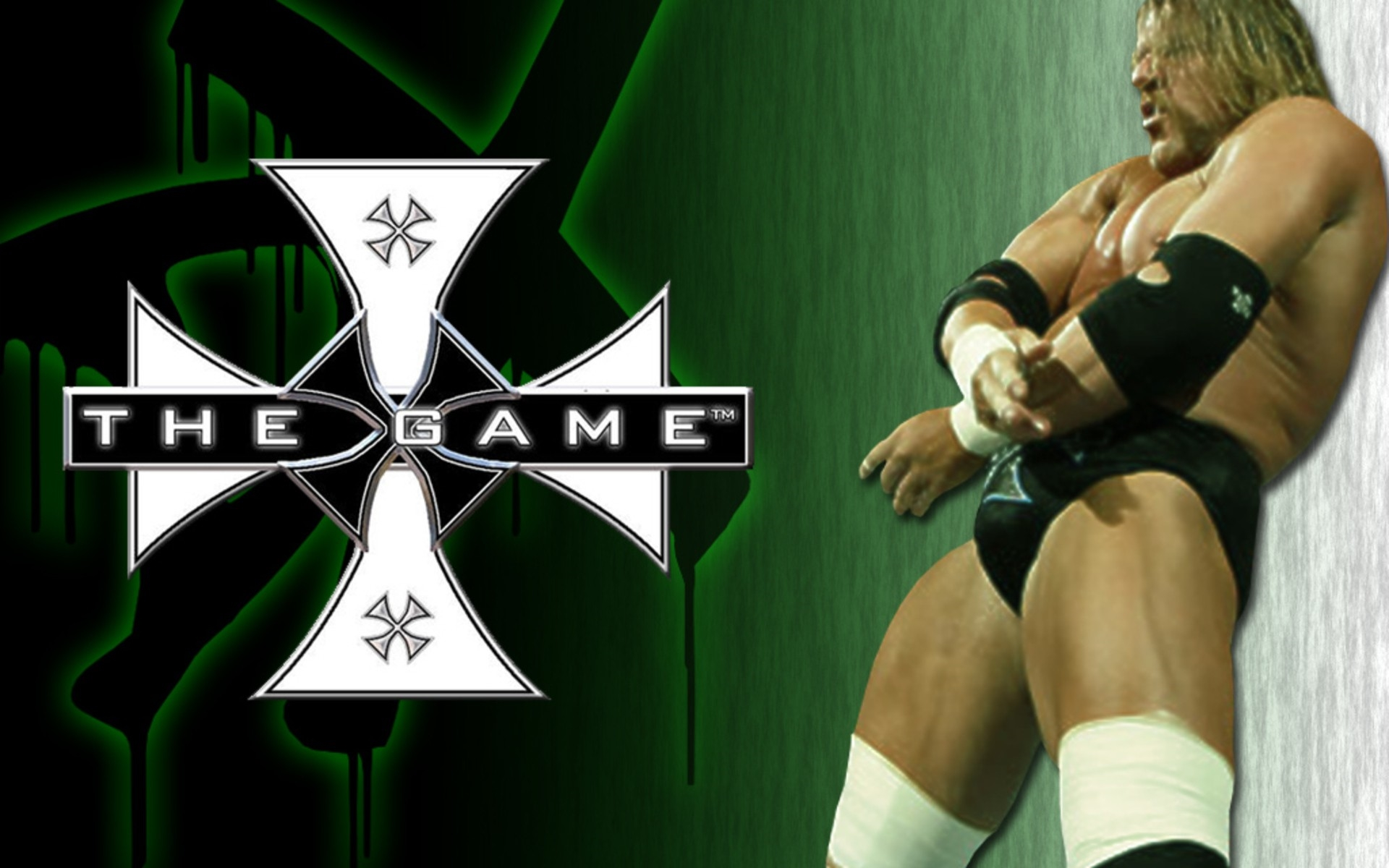 hhh the game wrestling wallpaper