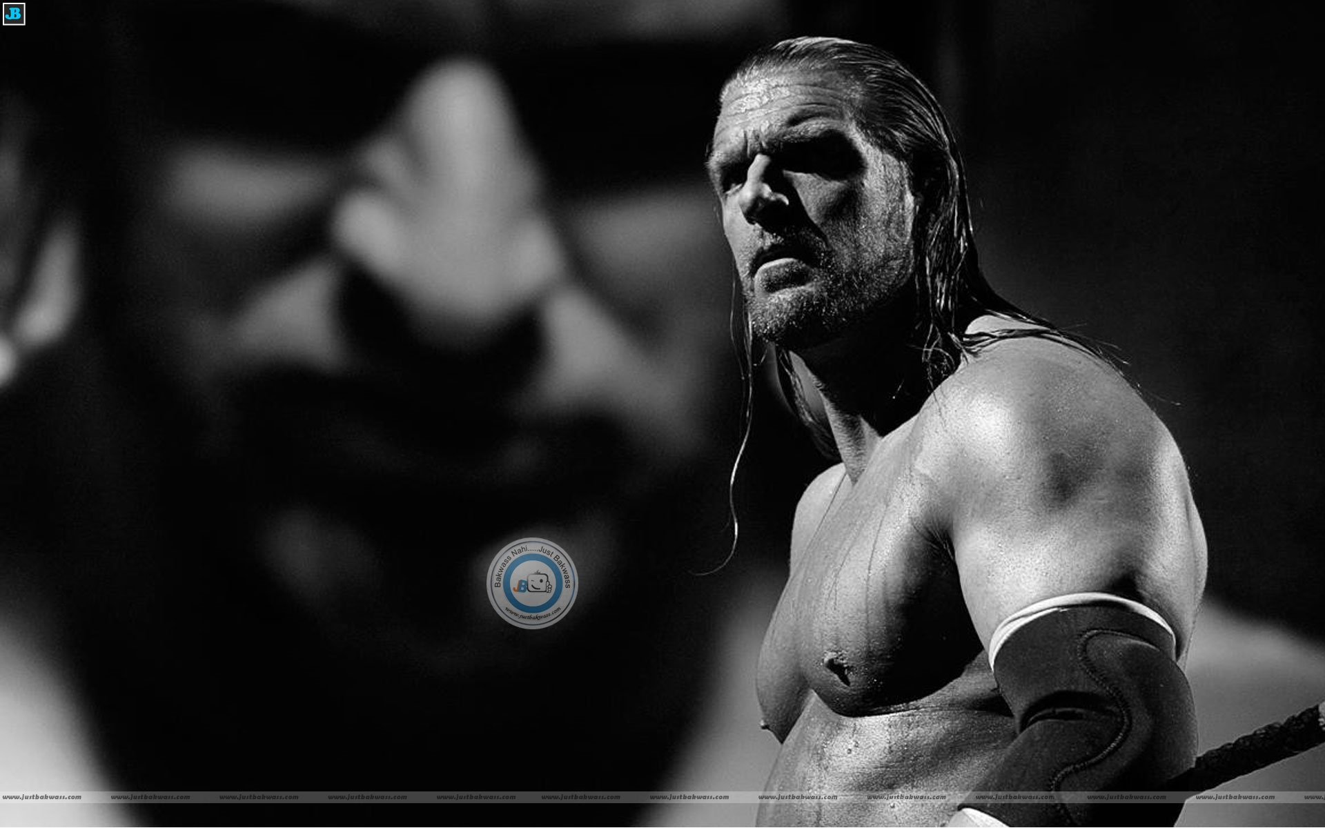 hhh wwe triple h wallpaper
