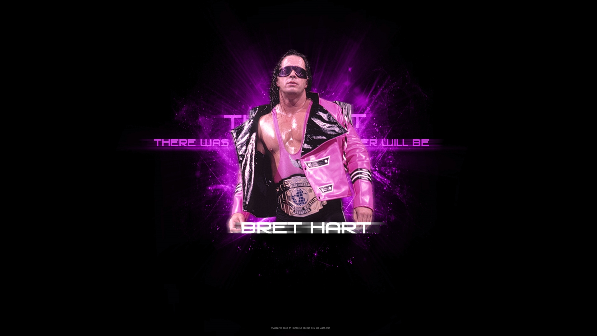 hit man bret hart wwe super star