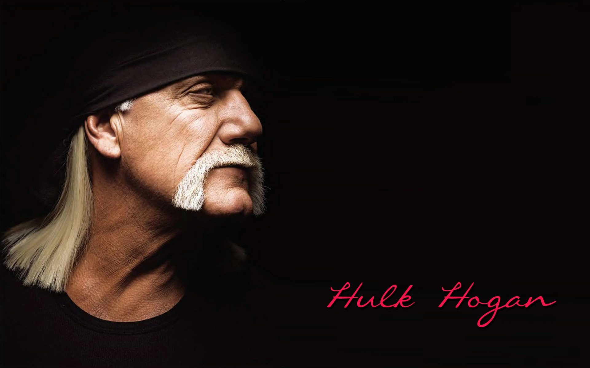 hulk hogan hd wallpaper
