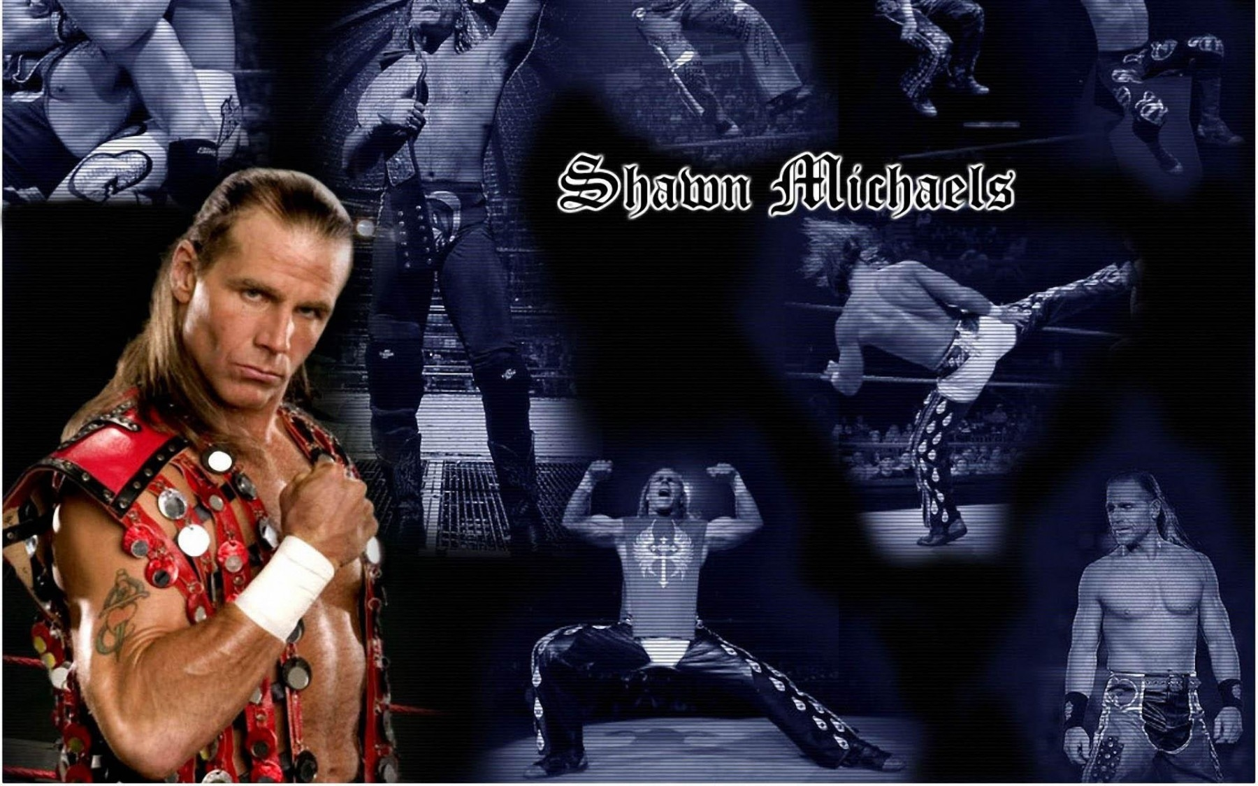 shawn michaels hbk desktop free wallpaper