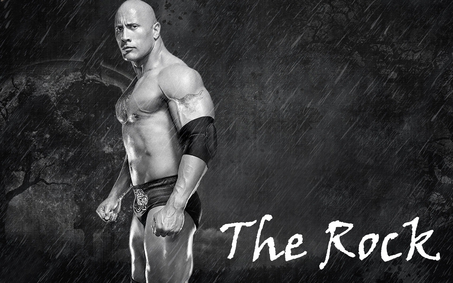 the rock new hd wallpaper