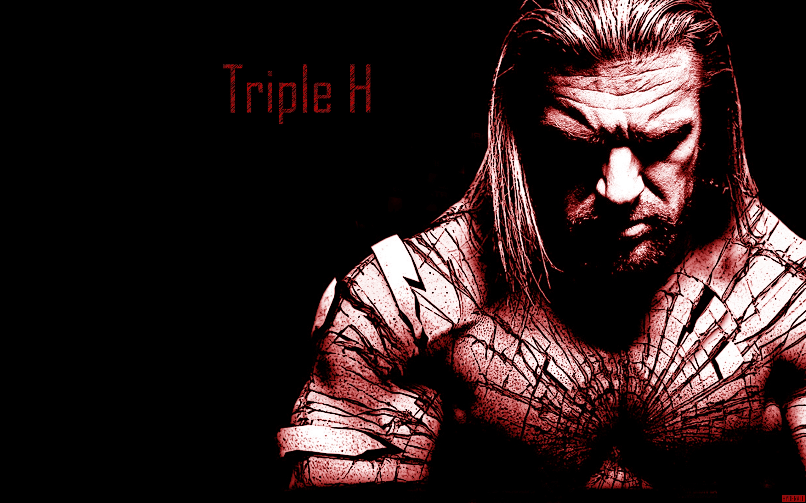 triple h wwe the game hd wallpaper